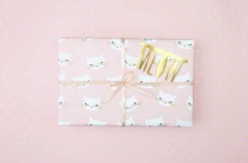 Rouleau de 2 feuilles de papier cadeau - Chat et pois doré