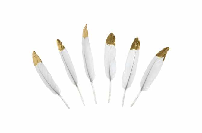 6 Plumes décoratives blanche avec bouts dorés