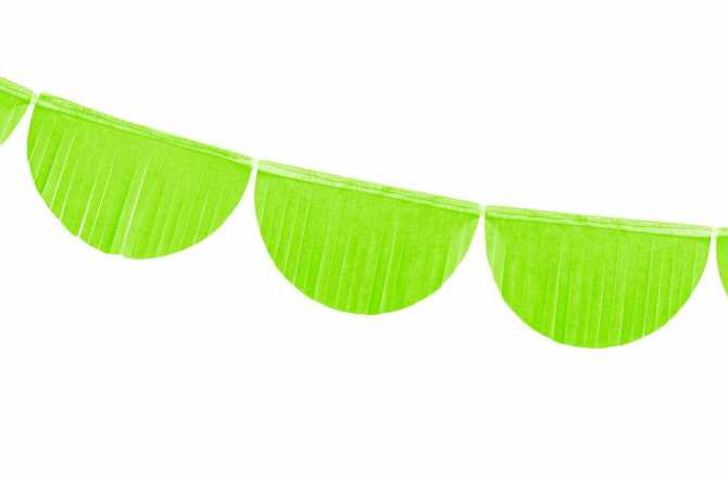 Guirlande rosettes - vert