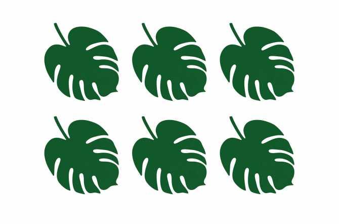 6 Feuilles tropicales - nuances de vert