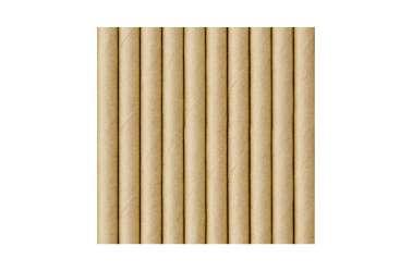10 Pailles en papier kraft